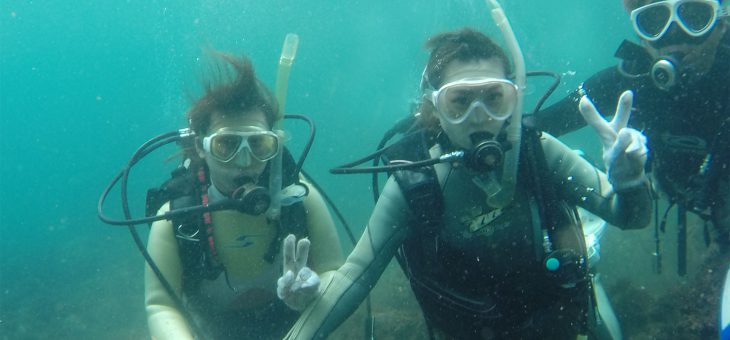 地元から体験ダイビング